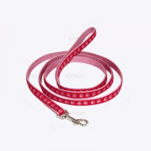 Poyester Collar Leash