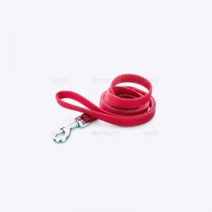 Female Dog Leash